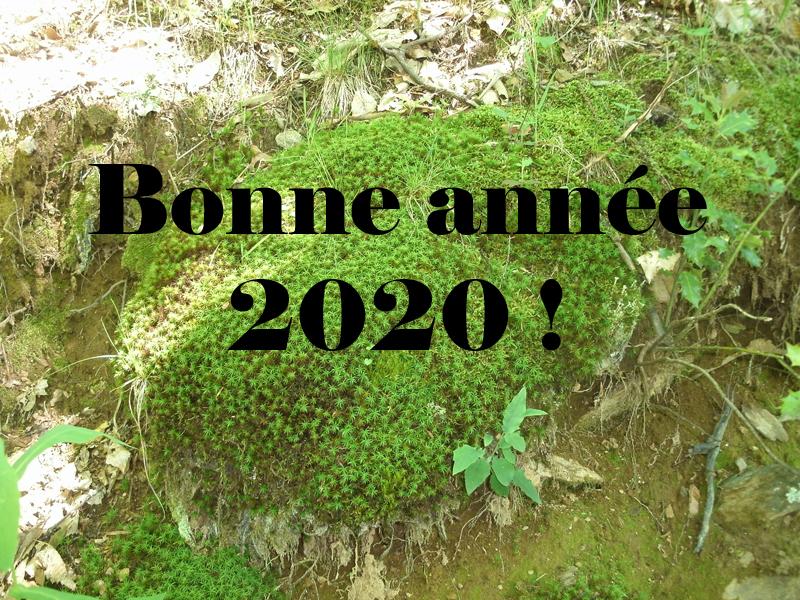 Bonne année 2020 à toutes et à tous !